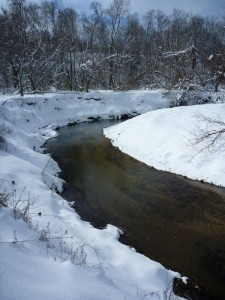 The Creek